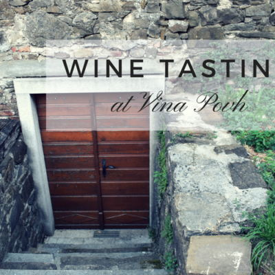 Wine Tasting at Vina Povh